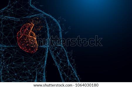 Human heart anatomy form lines and triangles, point connecting network on blue background. Illustration vector Royalty-Free Stock Photo #1064030180