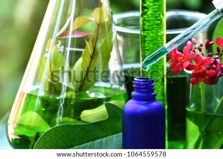 Scientist with natural drug research, Natural organic botany and scientific glassware, Alternative green herb medicine, Natural skin care beauty products, Research and development concept. #1064559578