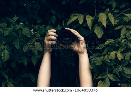 Woman's hands holding camera and snapping photos hidden in the bushes Royalty-Free Stock Photo #1064830376