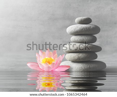 Stones and pink flower lotus balance. Zen and spa concept. #1065342464