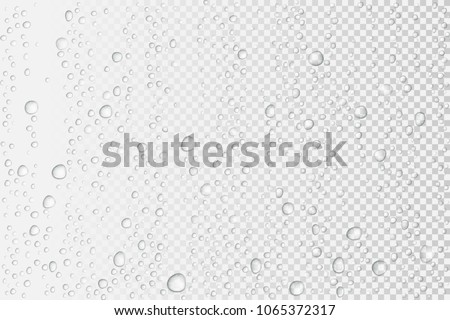 Vector Water drops on glass. Rain drops on transparent background. #1065372317