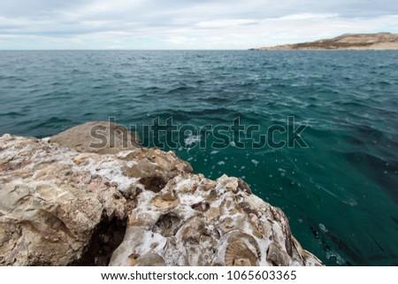 Views from the bay at Puerto Pirámides in Valdes Peninsual, Patagonia. #1065603365