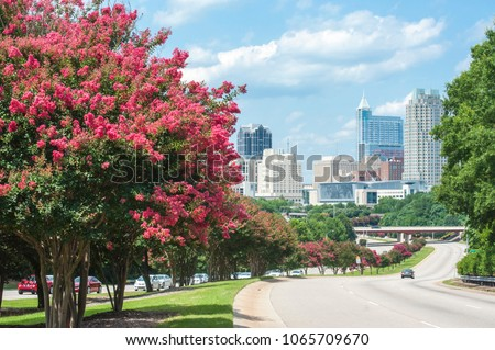Raleigh skyline in the summer with crepe myrtle trees in bloom #1065709670