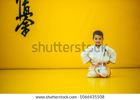 A karate kid in rest position. With the word kyokushinkai on the background. Which means: the last truth associated. Royalty-Free Stock Photo #1066435508