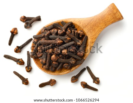 dried cloves in the wooden spoon, isolated on white background #1066526294