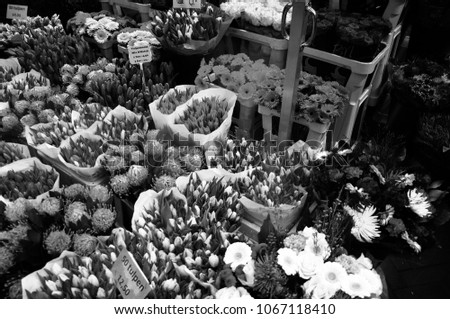 Flowers in the flower market. Flowers on the sales counter. February 2018. Amsterdam, The Netherlands. #1067118410