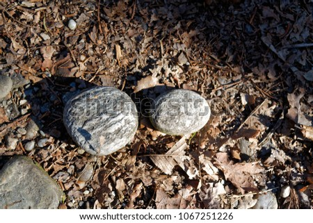Stone of meditation for relaxation and purification of the mind. #1067251226