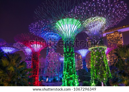 Singapore, November, 08, 2017 -  People enjoy a beautiful night  to visit the Supertree Grove at Gardens by the Bay #1067296349
