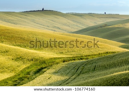Scenic view on the green fields and rolling hills of Tuscany near Pienza Italy #106774160