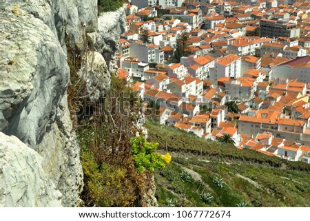 Nazare view from the cliffs - Centro Portugal #1067772674