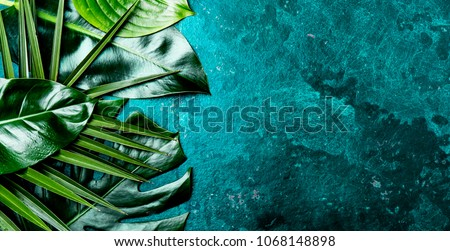 Creative tropical leaves background. Trandy tropical leaves on turquoise slate background - color of the year 2018. Top view, copy space. #1068148898