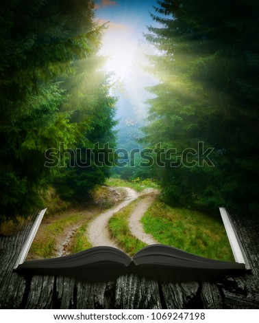 Way through the misty forest on the pages of an open magical book. Majestic landscape. Nature and education concept. #1069247198