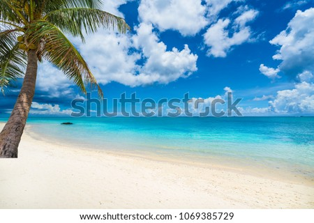 Tropical scenery with amazing beaches of  Mauritius island #1069385729
