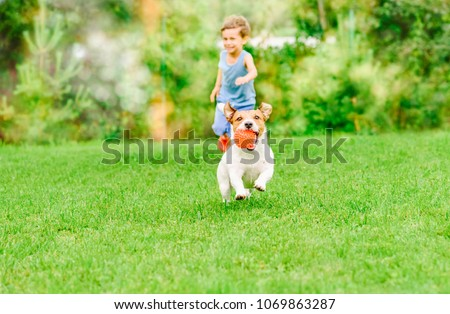 Dog with ball in mouth runs from kid playing chase game at summer lawn #1069863287