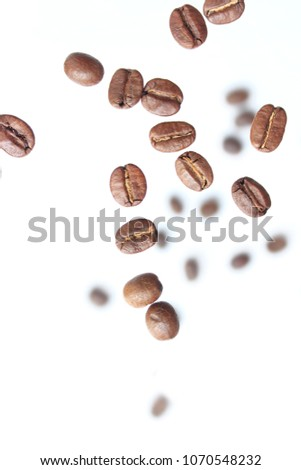 Coffee bean on white. #1070548232