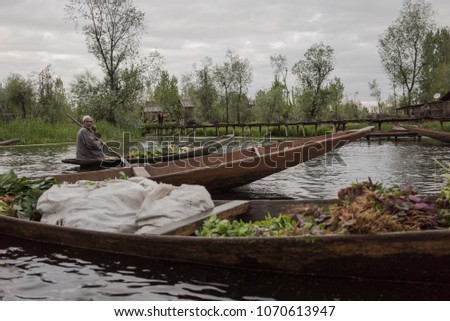 Dal Lake, Srinagar, Kashmir-April 12, 2018:Kashmir's Floating Vegetable Market at sunrise and cloudy. Most of the produce sold here is grown in floating gardens on the Dal Lake.  #1070613947