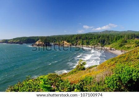 View of Trinidad State Park in California from Trinidad Head #107100974