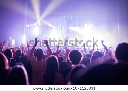 Crowd in a music concert performance in a theatre #1071125831