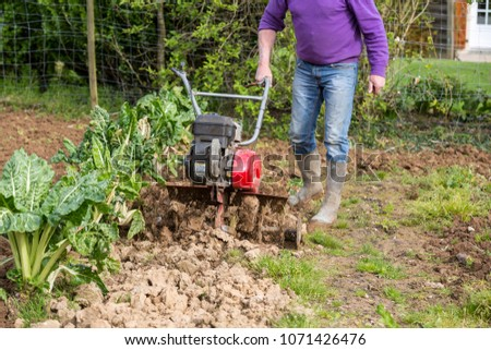 senior farmer gardener working in the garden with rototiller , tiller tractor, cutivator, miiling machine. Permaculture #1071426476