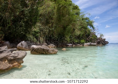 The lagoon with clear blue sea surrounded by tropical bushes #1071712292