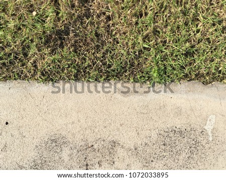 Cement with grass floor texture for background #1072033895