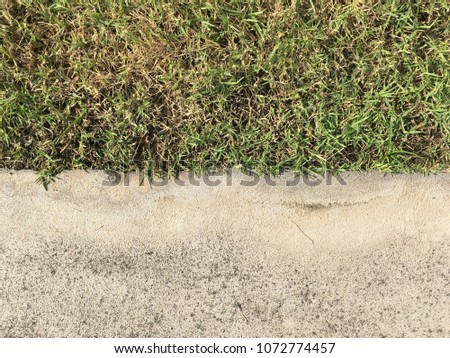 Cement with grass floor texture for background #1072774457