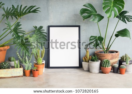 Black frame poster with leaf plant and cactus. Earth day and gardening concept. Lifestyle home decor