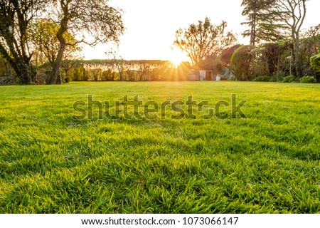 Ground level view of a well maintained and  recently cut lawn seen within a large garden just before sunset. Golden light is seen streaming in from a distant hedge in early summer. Royalty-Free Stock Photo #1073066147