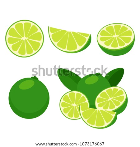 lime isolated set, slice, cut (flat design) #1073176067