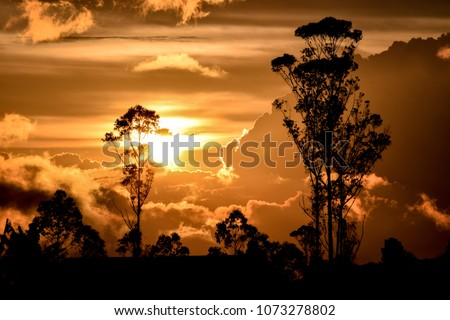 the awesome sunset  Royalty-Free Stock Photo #1073278802