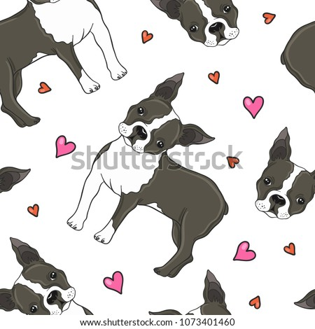 Boston terrier dog and hearts vector seamless pattern.