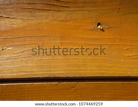 Texture of a wooden wall made of boards. Modern solutions for advanced design #1074469259