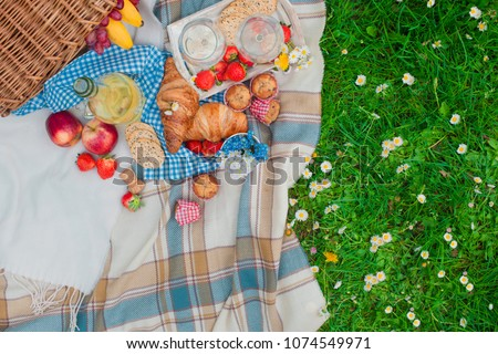 picnic basket and food. Green meadow with flowers. Spring in the Netherlands. Holidays. View from above