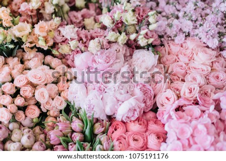 Beautiful blossoming flower bed of freshly delivered flowers at the florist shop: peonies, roses, ranunculus, tulips, carnations,eustoma lisianthks, hydrangea in tender pink colours, top view #1075191176