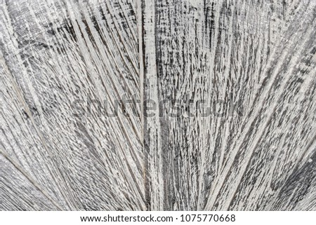 old gray painted wood textured background #1075770668