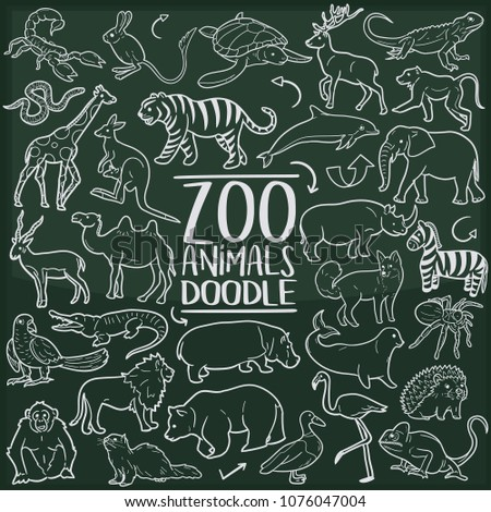 Zoo Animals Doodle Line Icon Chalkboard Sketch Hand Made Vector Art.