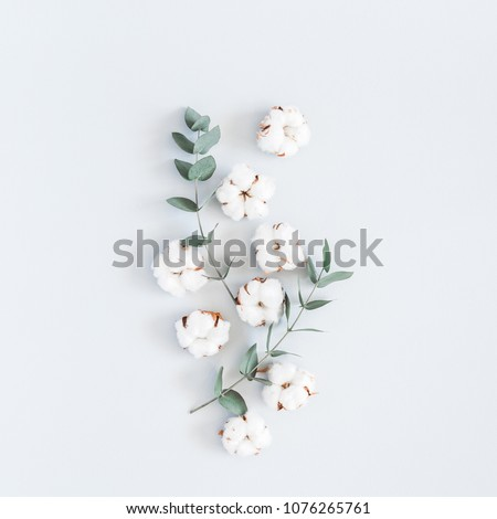 Flowers composition. Pattern made of cotton flowers and eucalyptus branches on pastel blue background. Flat lay, top view, square #1076265761