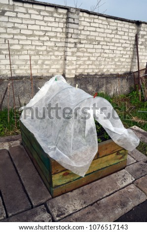 Garden beds in wooden frame geotextile covered #1076517143