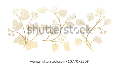 Set branches with leaves isolated. Vector illustration. EPS 10. #1077072209