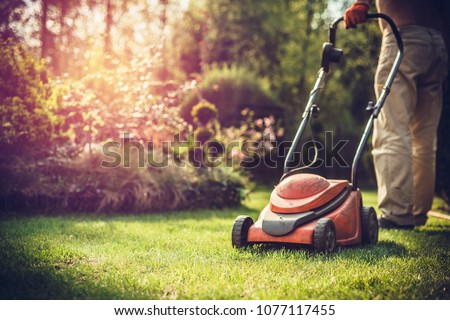 Mowing the grass. The gardener mows the grass with a red electric mower. Work in the garden, spring cleaning. Care for the garden and grass. #1077117455