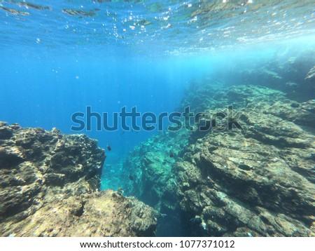 Beautiful snorkeling trip #1077371012