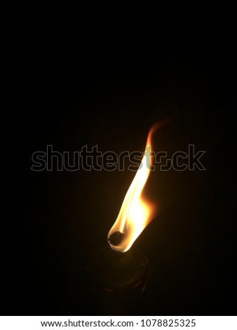 flame of a bamboo torch burning in the night. #1078825325
