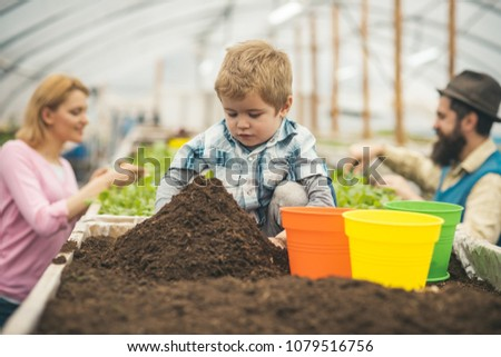 Concentrated kid sitting behind big mound of soil. Cute boy playing with green, yellow and orange pots while his parents are working in greenhouse. #1079516756