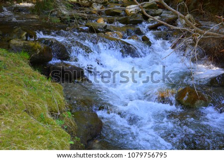 River in the forests of Transylvania, Romania. Green landscape in the midsummer, in a sunny day #1079756795