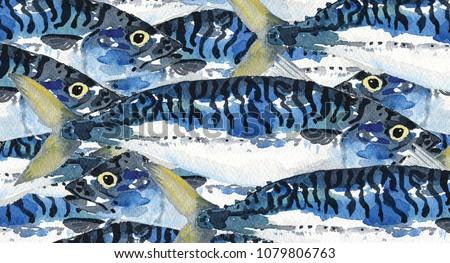 Watercolour Painting illustration of a school of mackerel fish