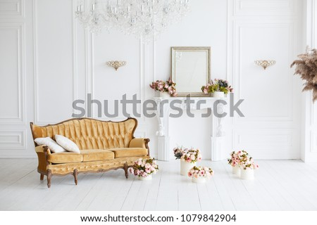 Interior of white room in classic royal luxury style with beautiful brown sofa #1079842904