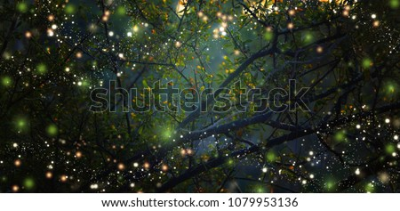 Abstract and magical image of Firefly flying in the night forest. Fairy tale concept Royalty-Free Stock Photo #1079953136
