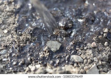 Macro photo of watering dark brown soil. #1080319649