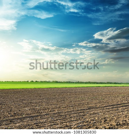 agriculture black field and sunset in blue sky with clouds #1081305830