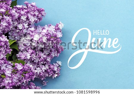 Hello June hand lettering card. Summer lilac flowers on blue background. #1081598996